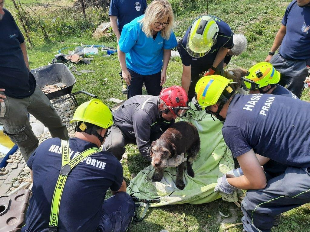 Hasiči v Moravské Nové Vsi vyprostili ze sutin psa
