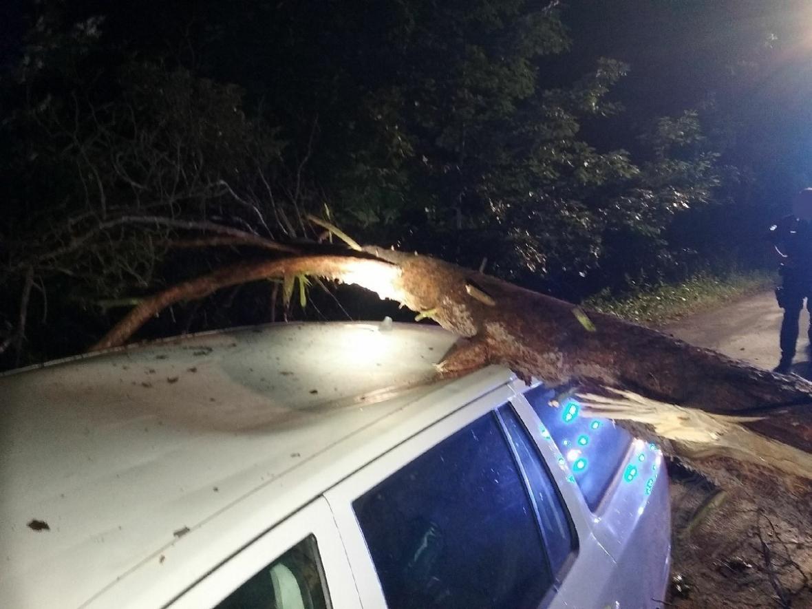 Na Pardubicku spadl strom na auto