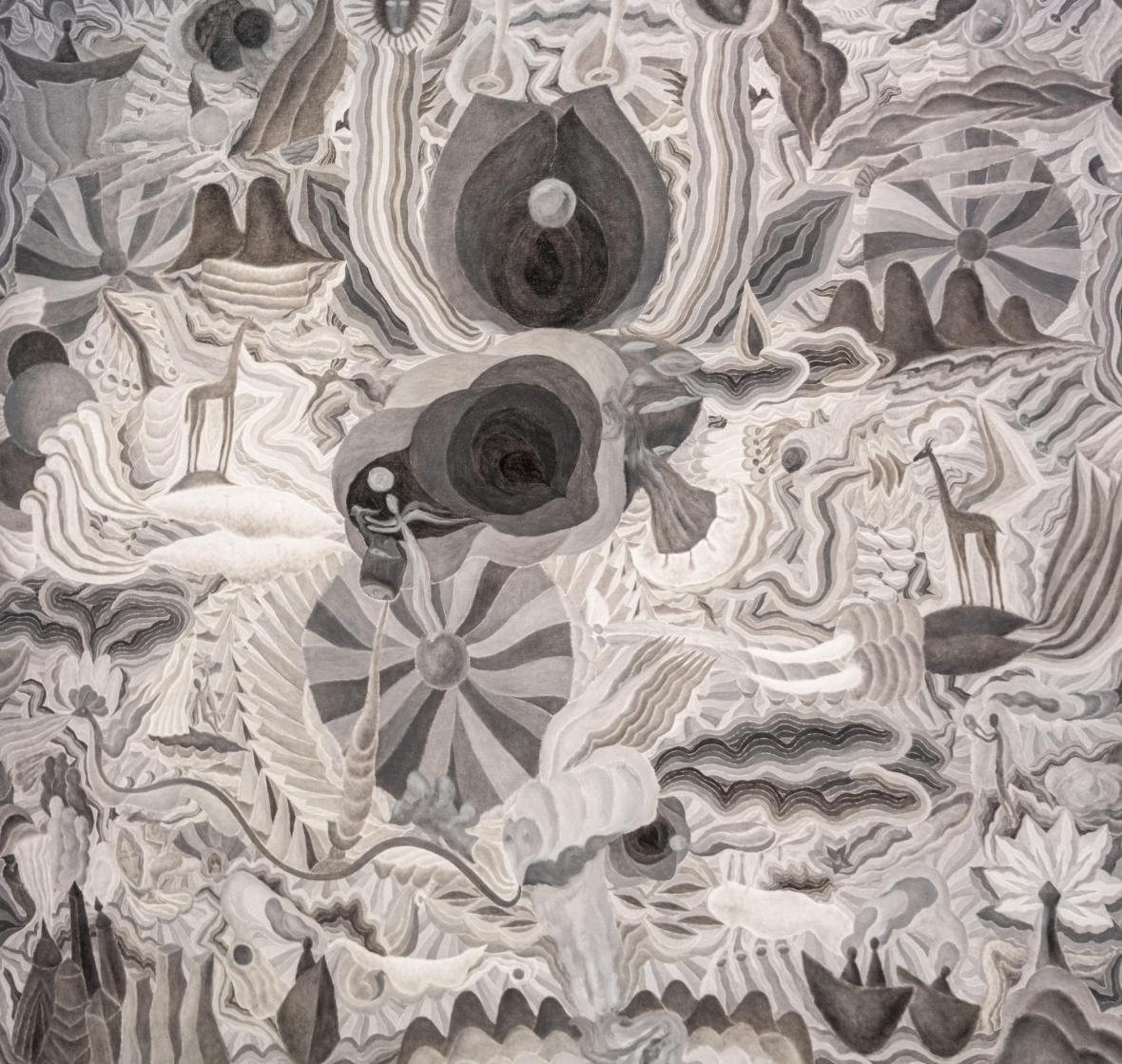Z výstavy Fenomeander