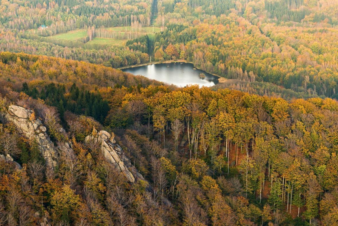 Šolcův rybník v bučinách Jizerských hor