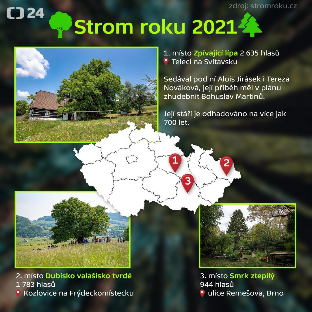Strom roku 2021