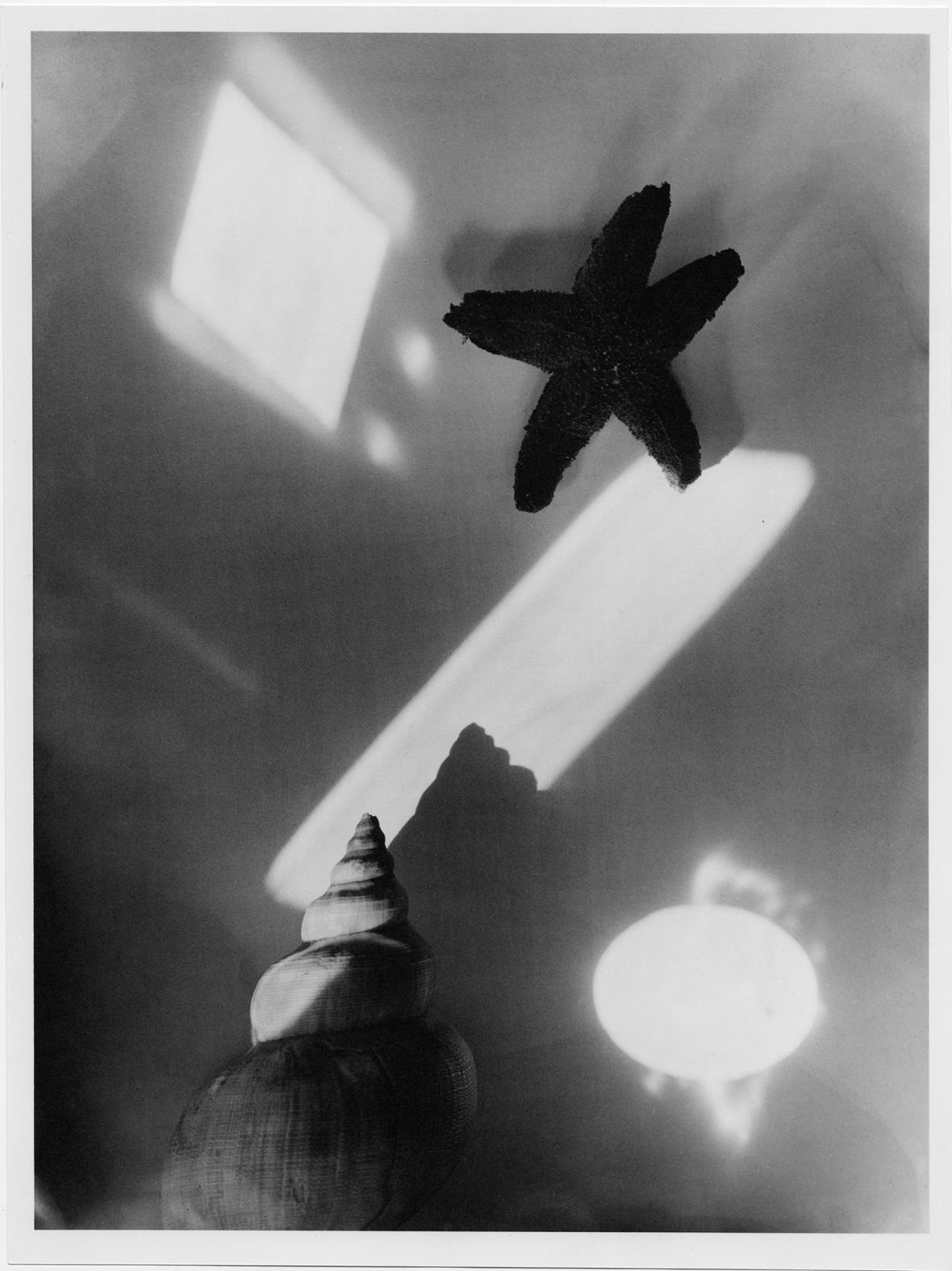 Jaromír Funke / Exotické zátiší, 1928-29
