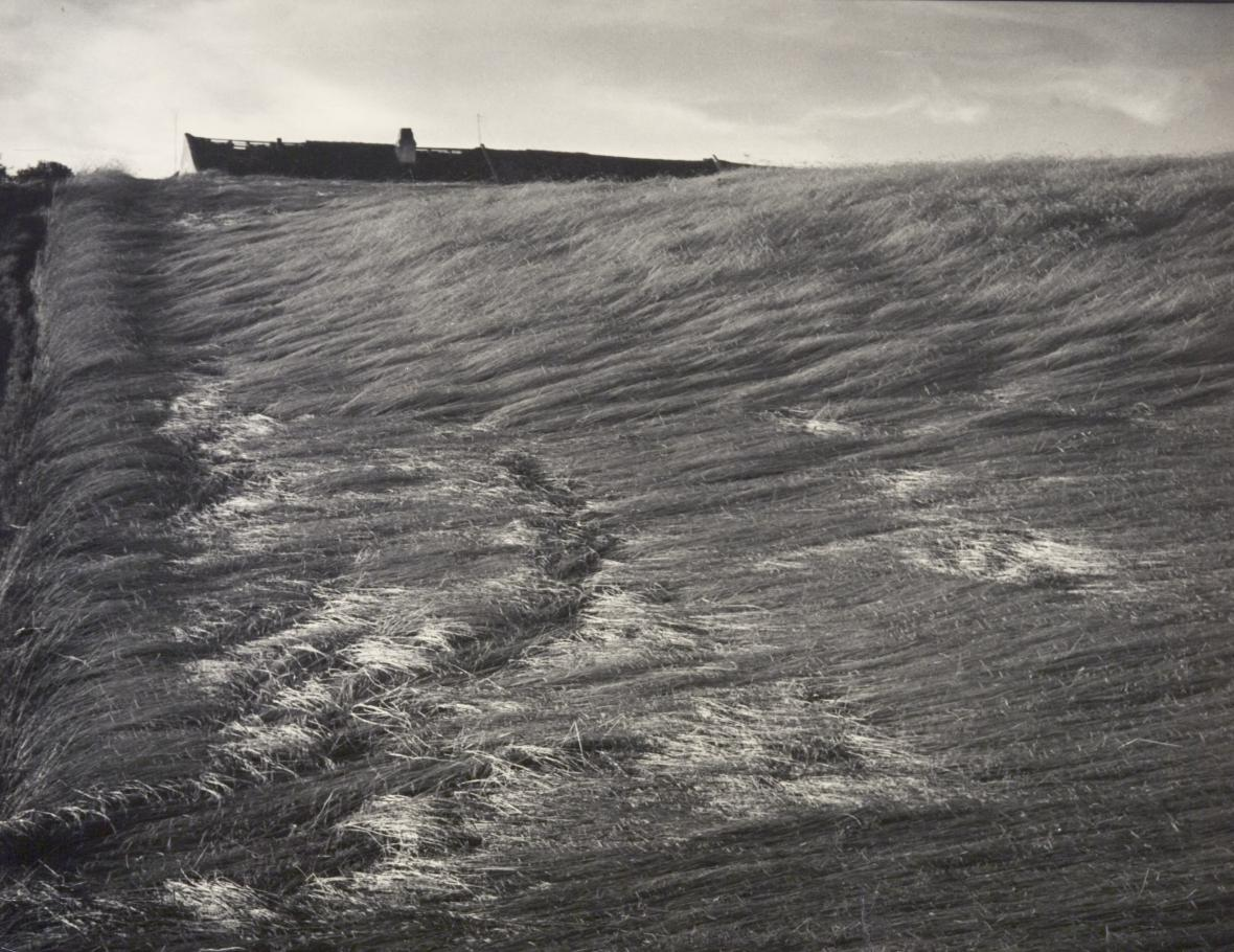 Eugen Wiškovský / Disaster, 1939