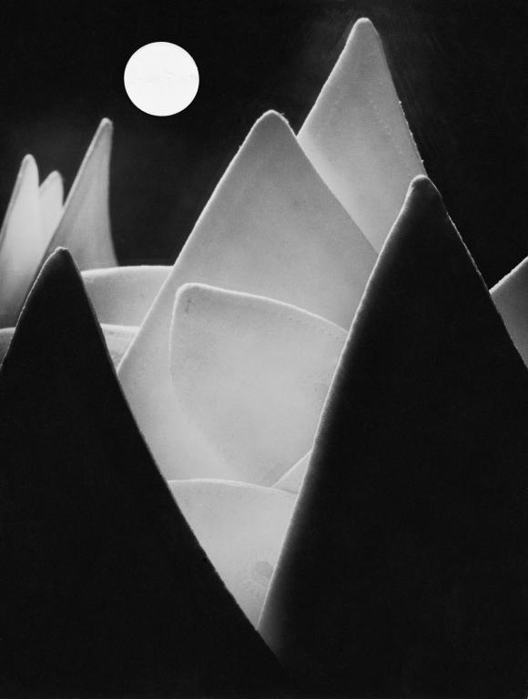 Eugen Wiškovský / Měsíční krajina, 1929