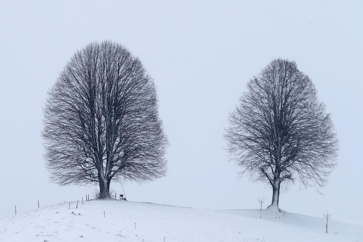 Sněhem pokrytá krajina ve švýcarském údolí Emmental