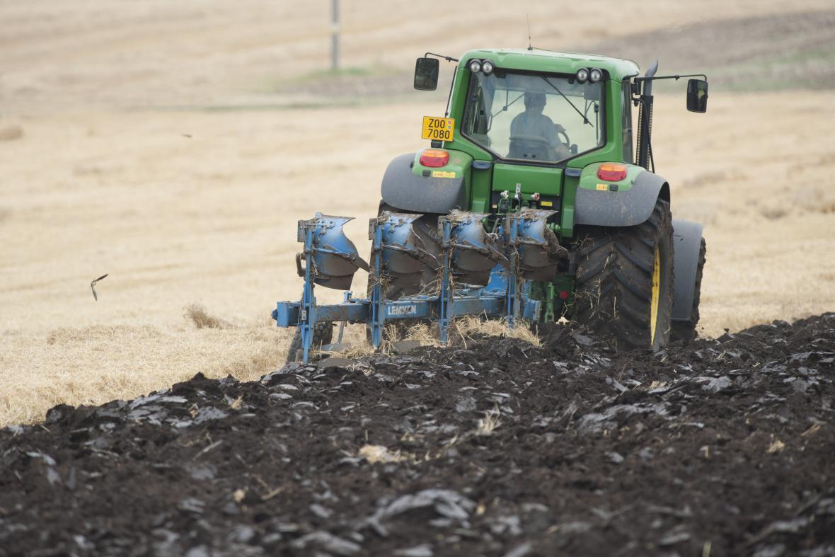 Solidní sklizeň už snižuje ceny na Plodinové burze