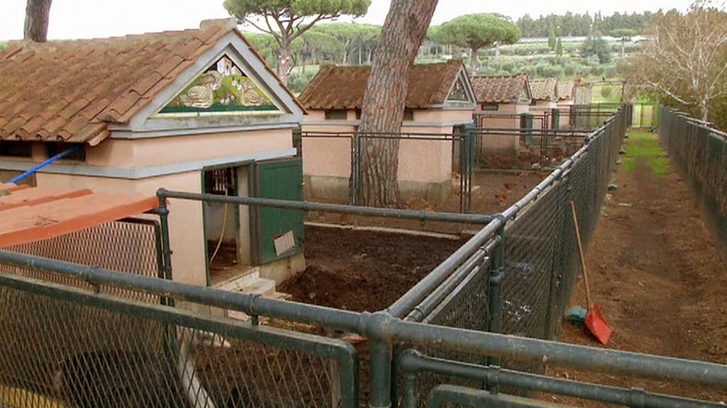 Farma v sídle papežů v Castel Gandolfo