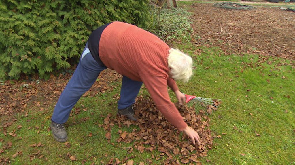 Spadané listí je jedním z příkladů bioodpadu