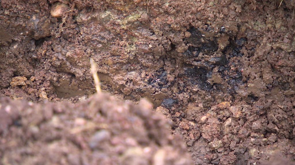 Půda v místě, kde mají být údajně zakopané sudy