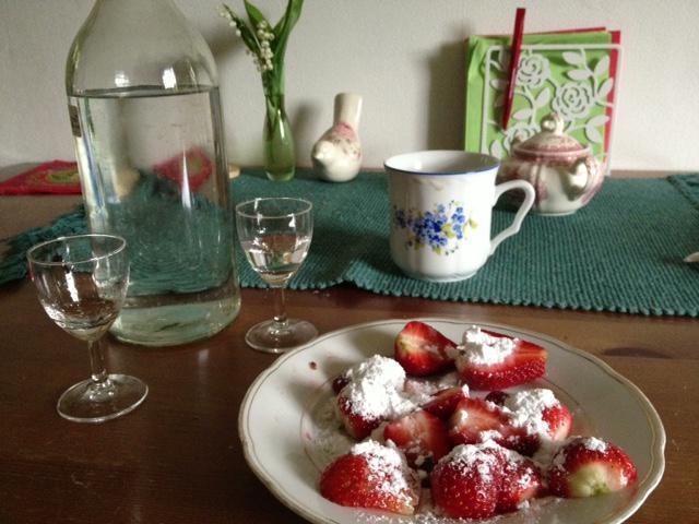 3. května jsme z Vesňan u Mělníka přivezli první jahody
