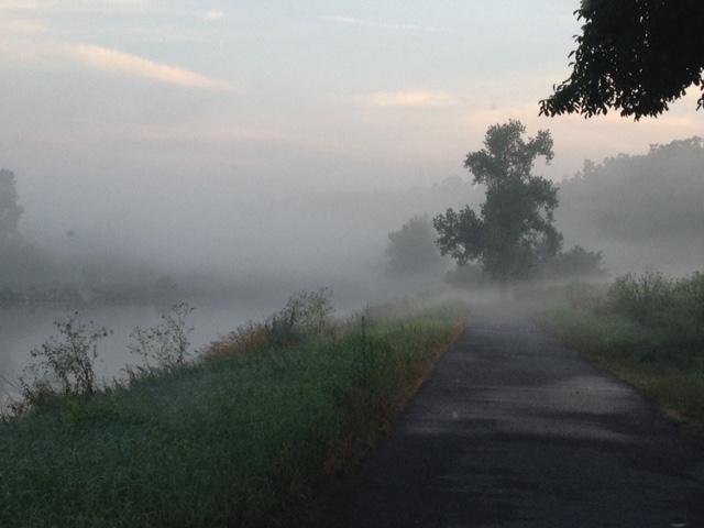 8. července jsem jel ranní mlhou ráno z chaty do práce a měl pocit, že začíná podzim