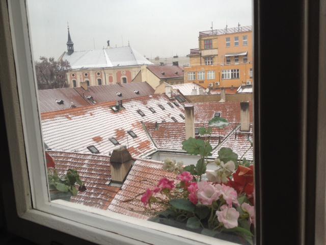 2. prosince napadl v Praze na chvíli sníh