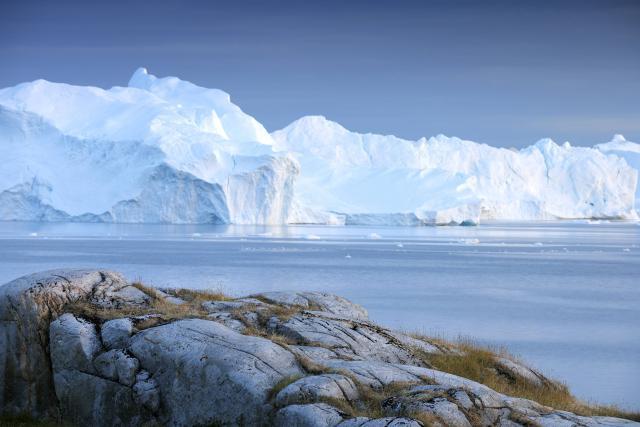 Arktická příroda