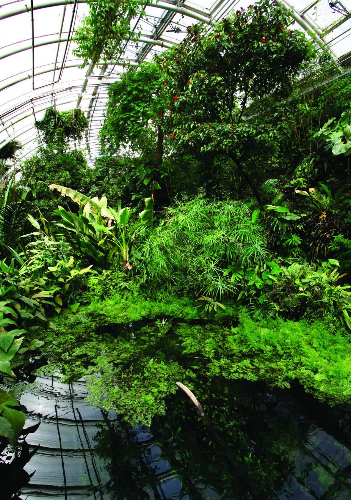 Skleník Fata Morgana v Botanické zahradě Praha