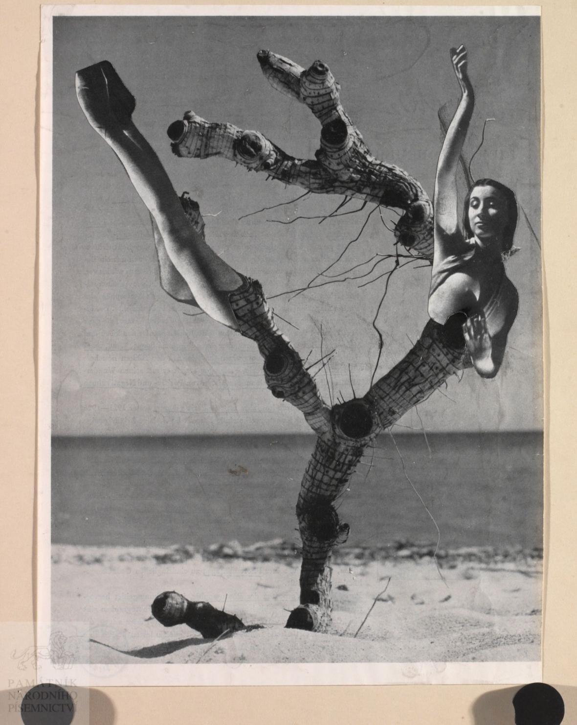 Koláž Karla Teigeho (1951)
