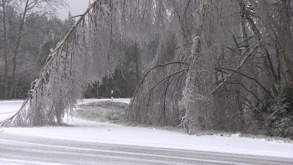 Zmrzlé větve místy omezují provoz