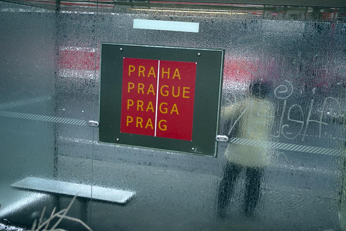 Ledovka v Praze