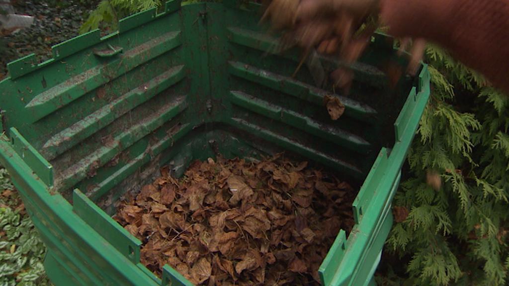Bioodpad v kompostéru