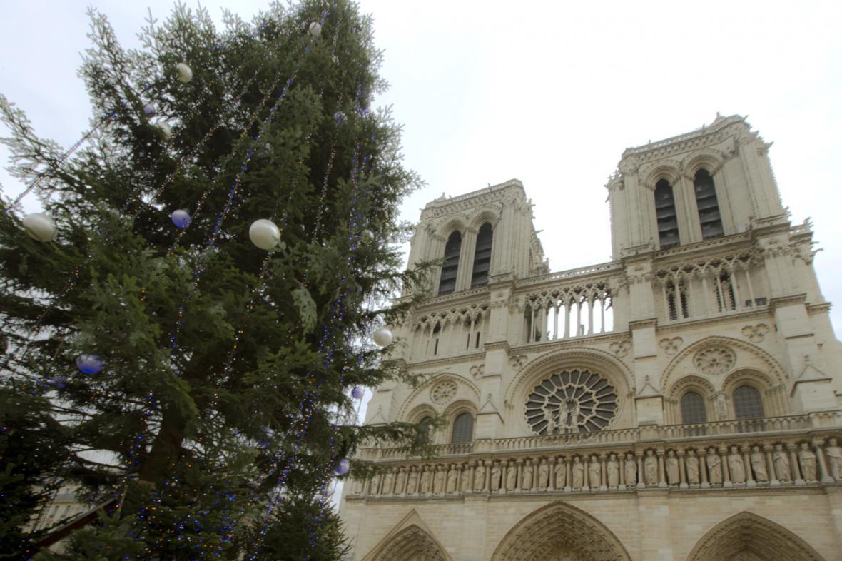 Vánoční strom před Notre Dame