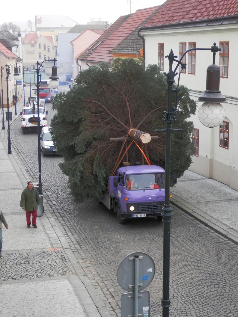 Příjezd vánočního stromu