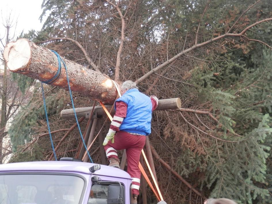 Instalace vánočního stromu