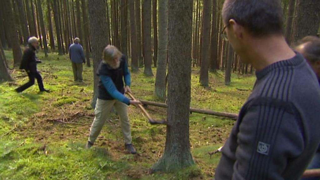 Kácení stromů pomocí sekyr - září 2013