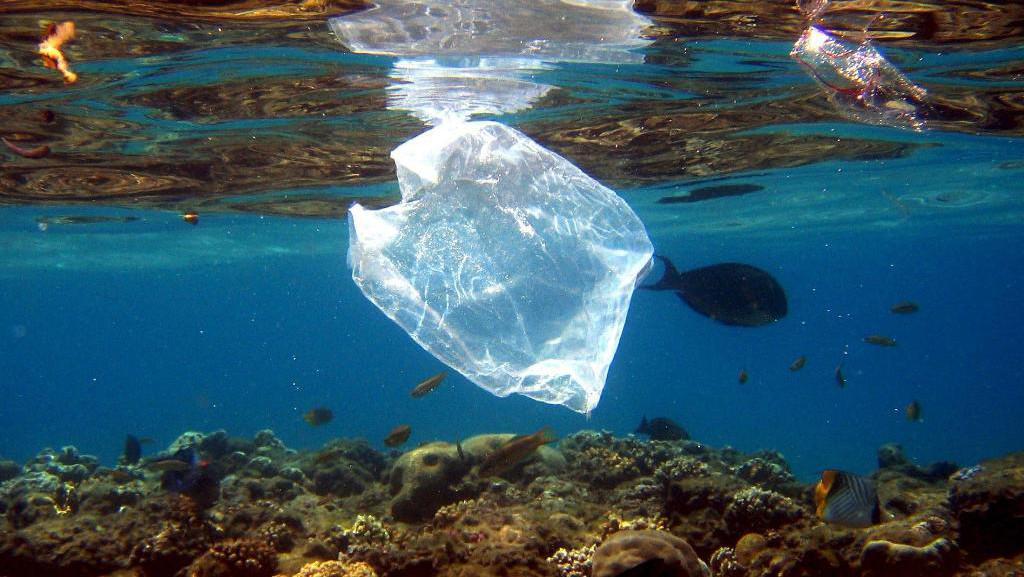 Plastové obaly v mořích