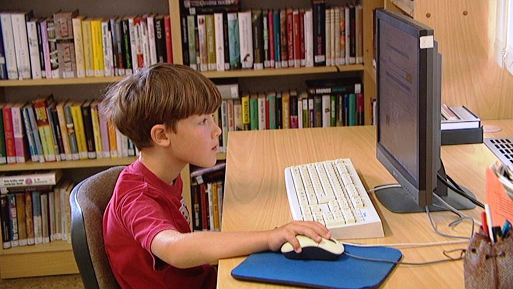 Internet v knihovně