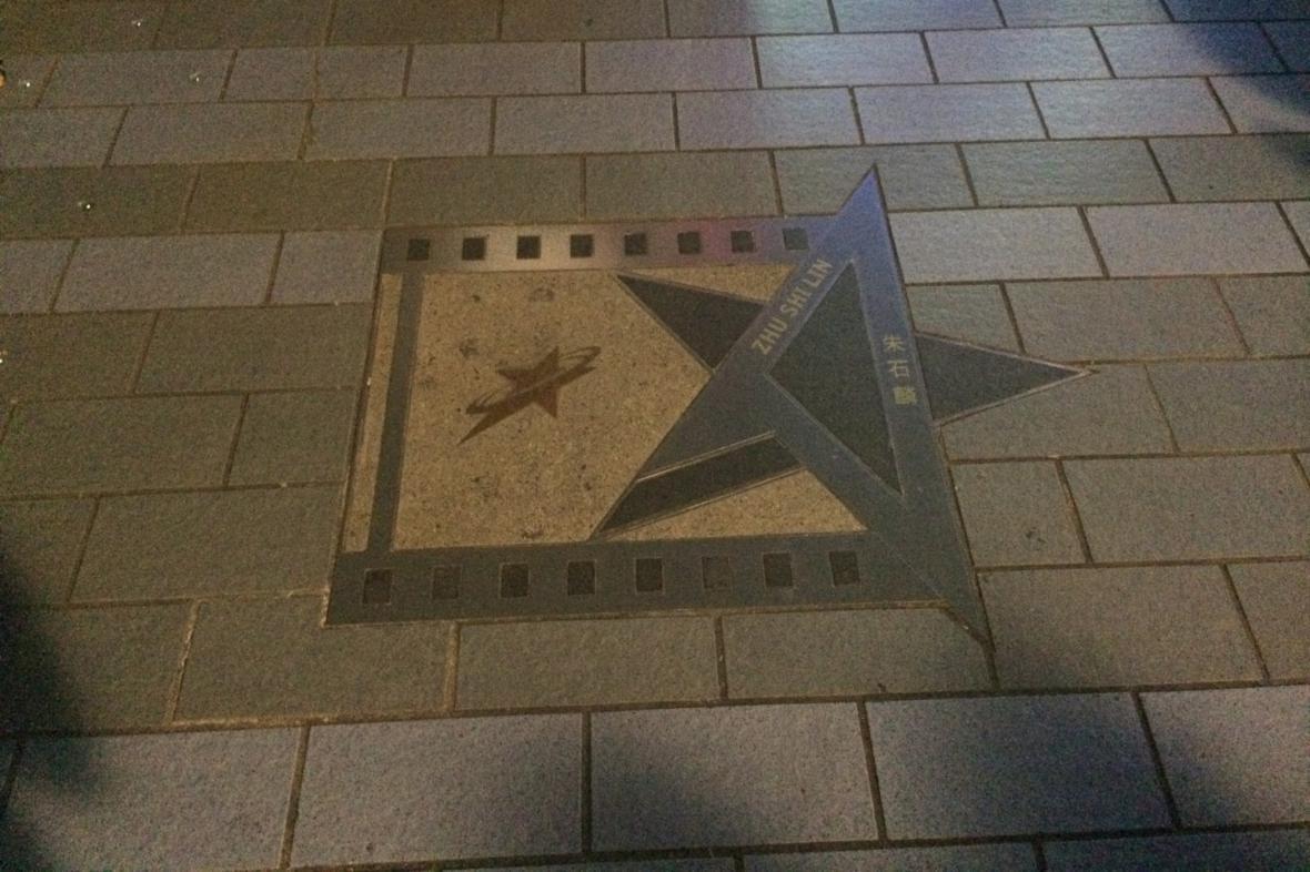 Hvězda místního umělce na