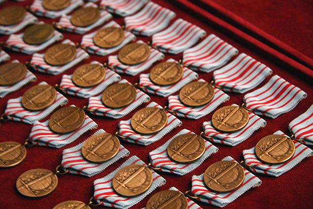 Medaile Za služby v zahraničí