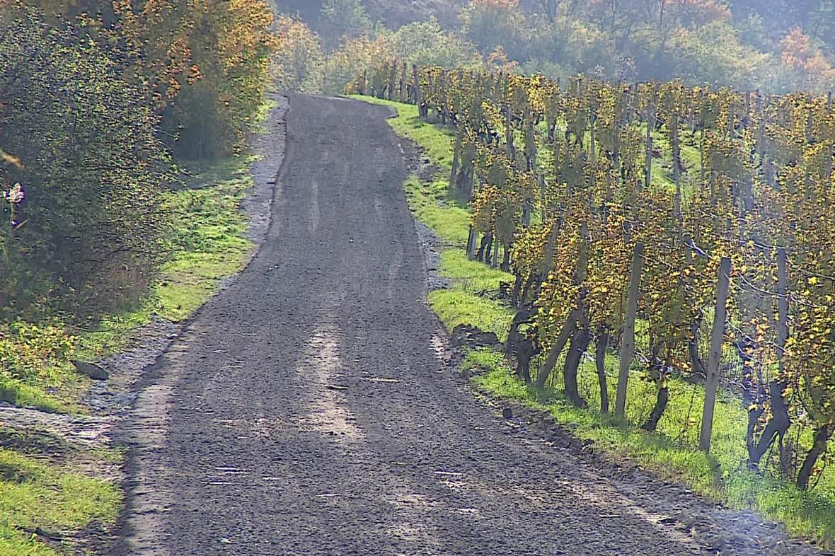 Provizorní cesta mezi Dolními Věstonicemi a Pavlovem