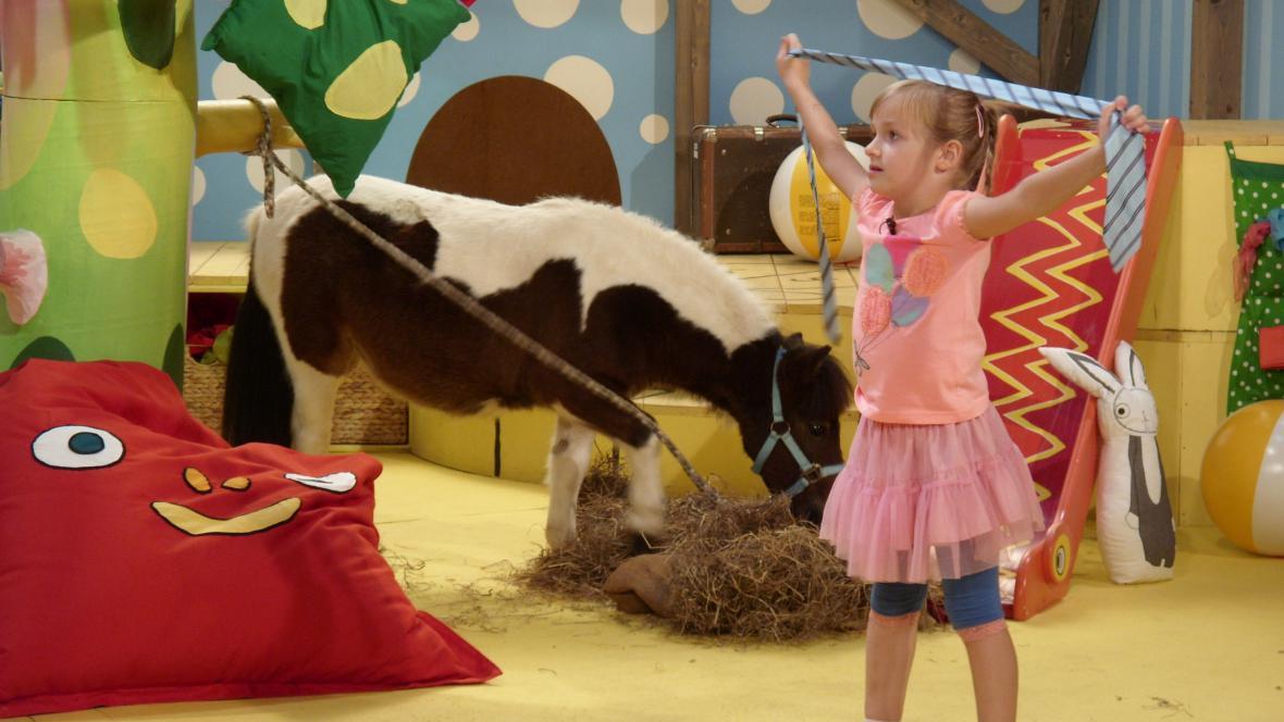 Mini kůň Pepík v Hýbánkách