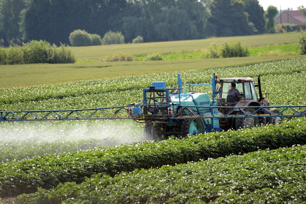 V EU se nejvíce používají pesticidy ve Francii, Itálii a Španělsku