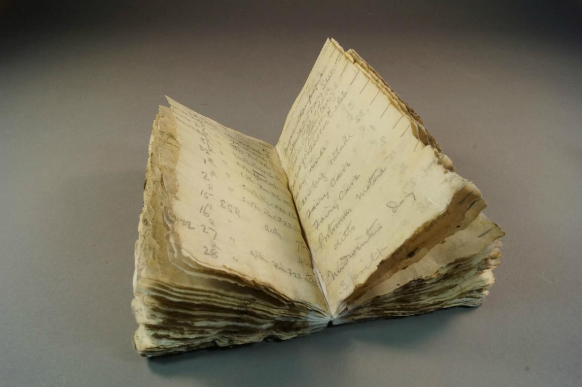 Levickův deník nalezený v tajícícm ledu - zápisky jsou i 100 letech čitelné