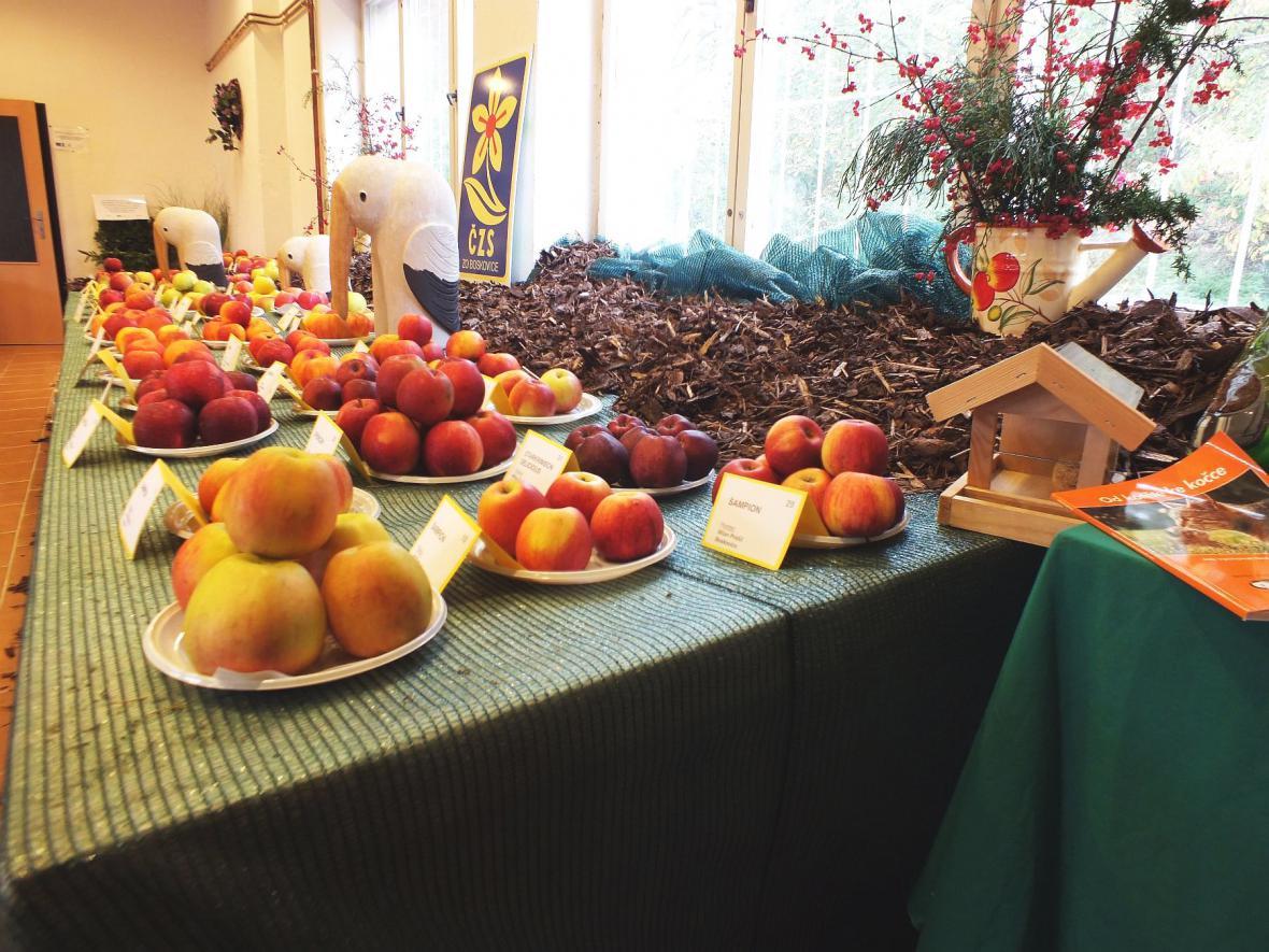 Regionální výstavy ovoce, ovocných a okrasných dřevin v Boskovicích