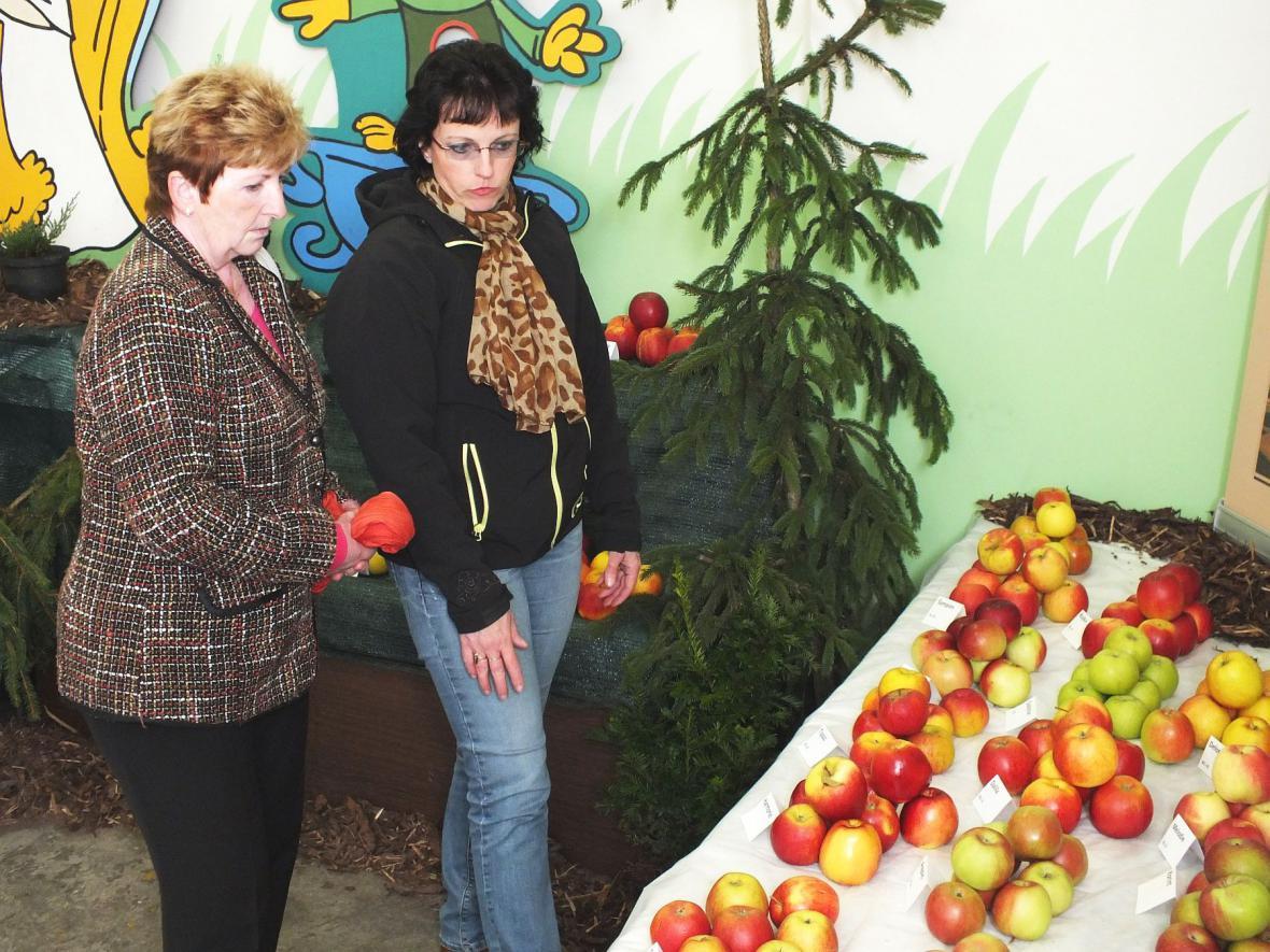 Z regionální výstavy ovoce, ovocných a okrasných dřevin v Boskovicích