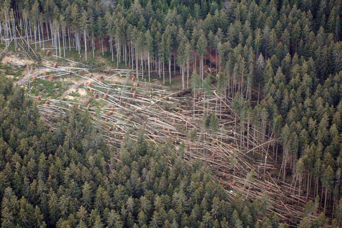 Následky orkánu Kyrill v Národním parku Šumava (leden 2007)