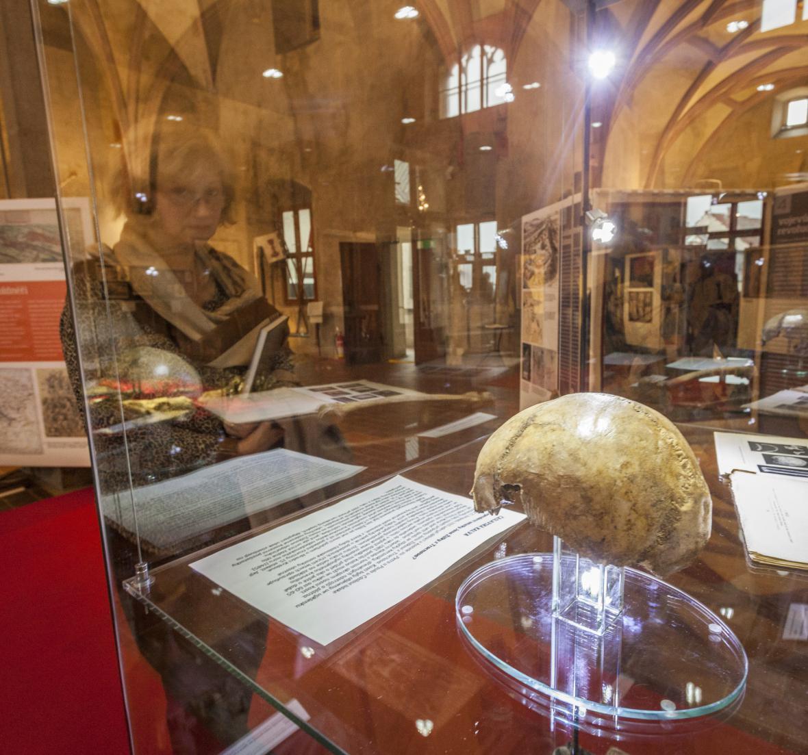 Lebka Jana Žižky na výstavě v Táboře