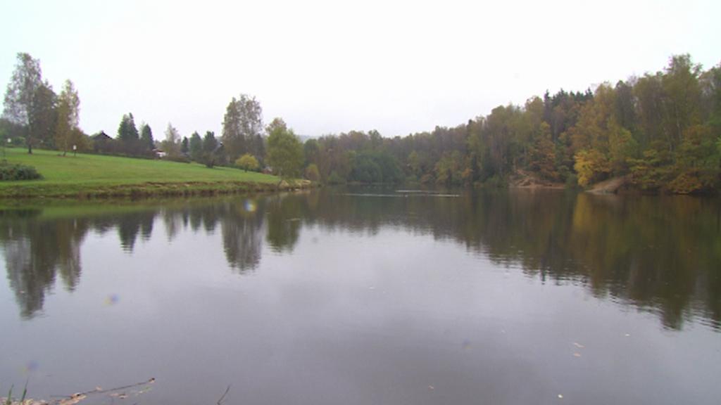 Rybník Tajch