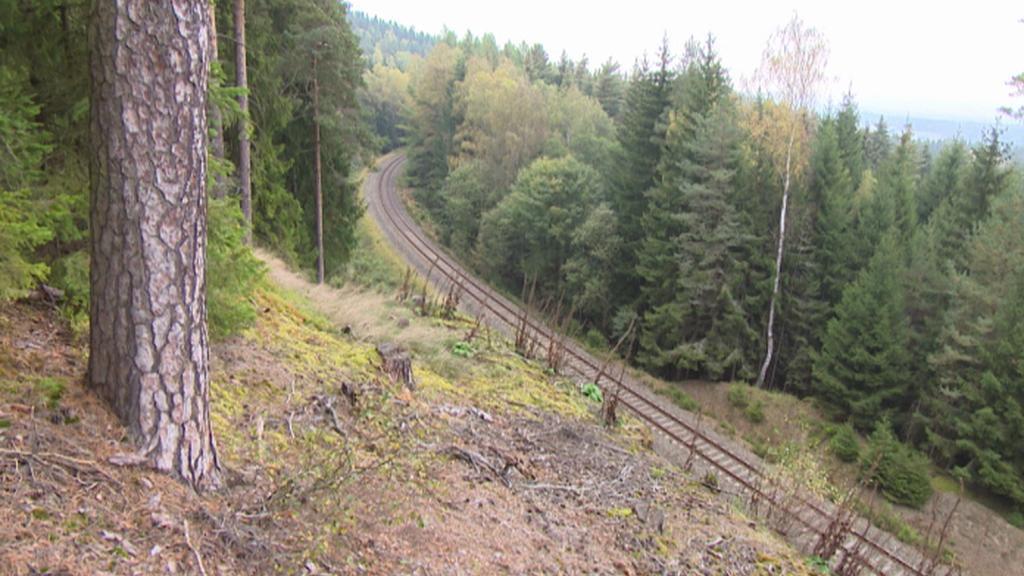 Železniční trať u Skalné