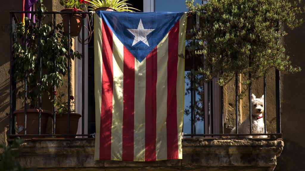 Vlajka katalánské nezávislosti