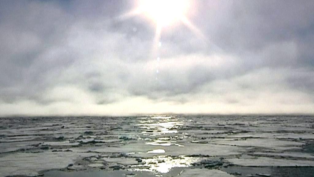 Tání ledu