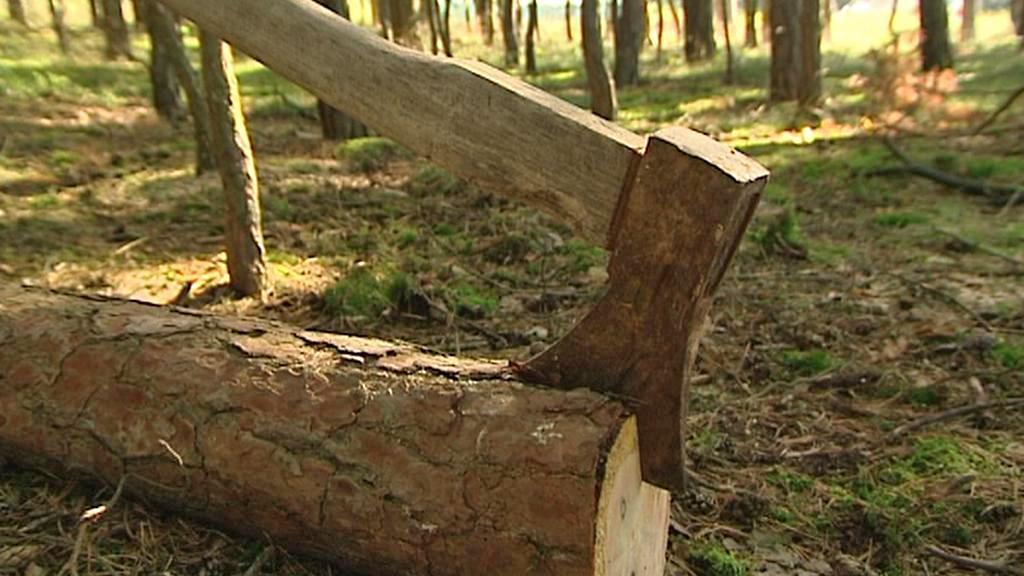 Samovýroba dřeva