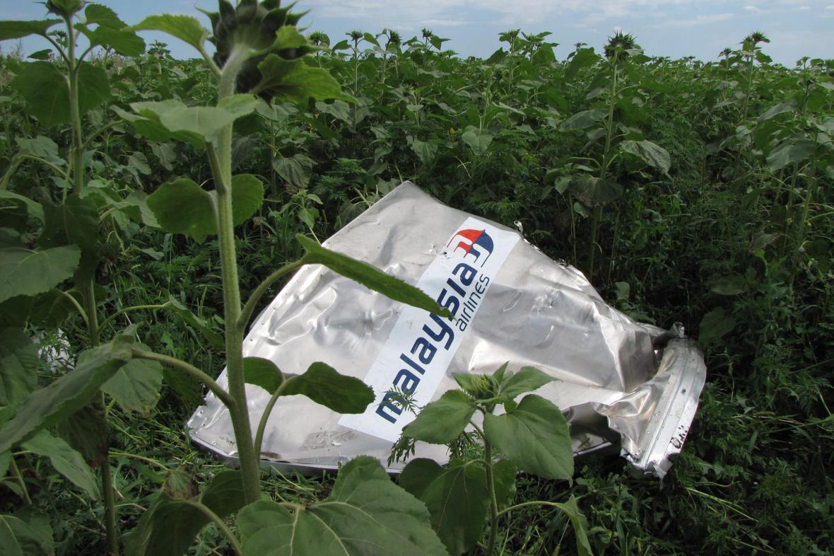 Katastrofa MH17: Zbytky v polích kolem