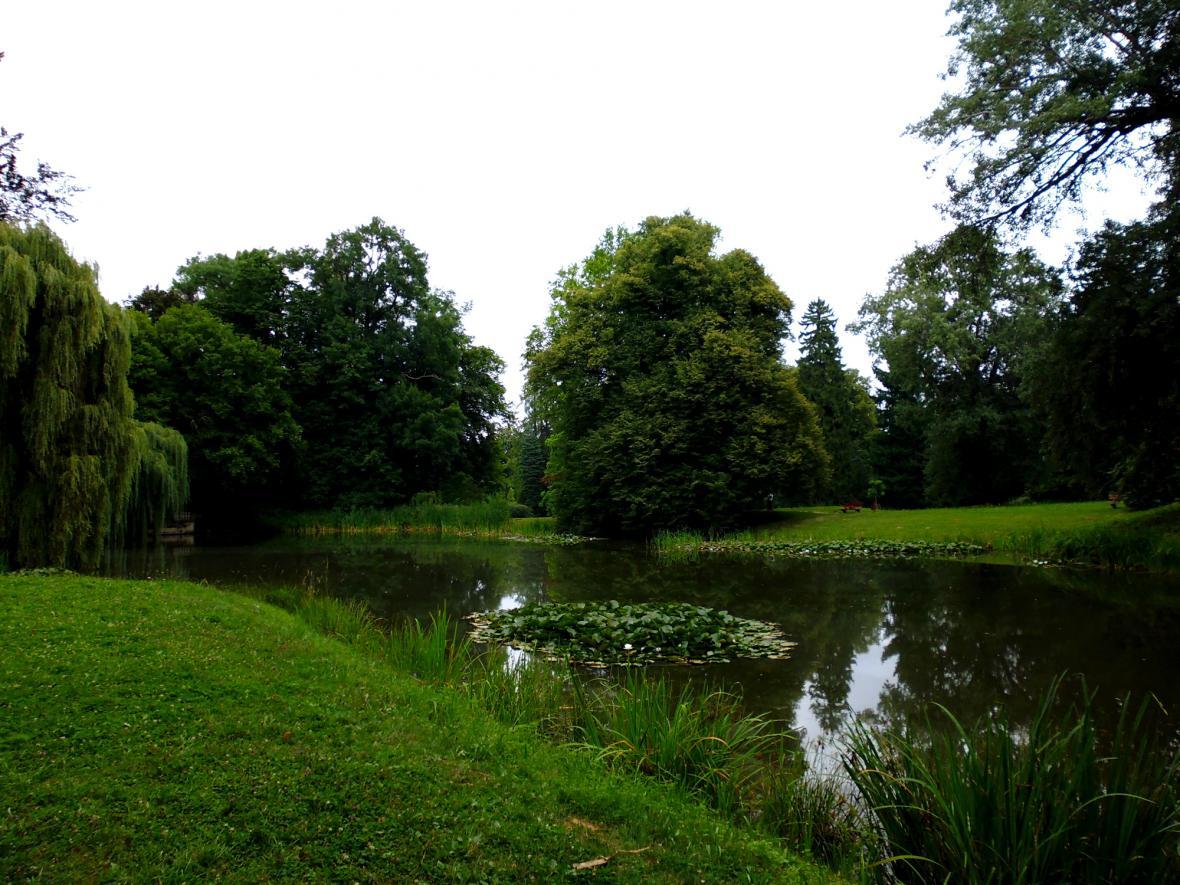 Zámecký park zdobí jezírko s lekníny