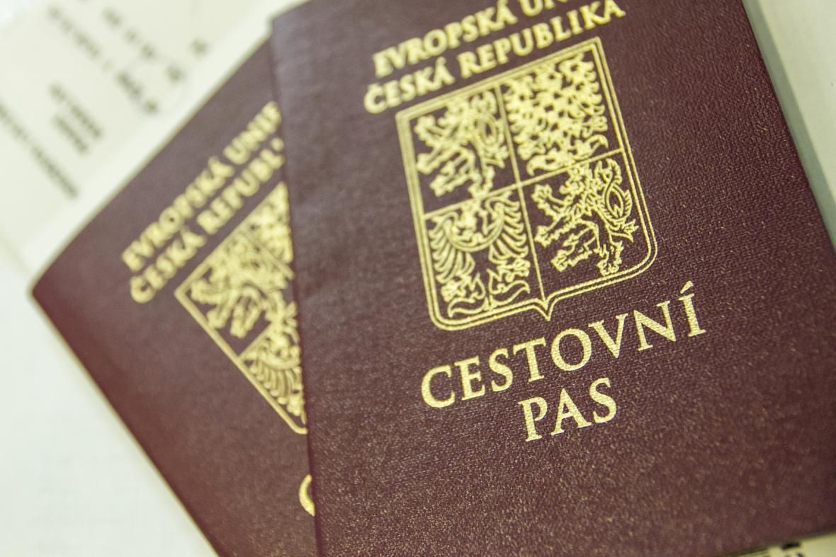 Cestovní pasy