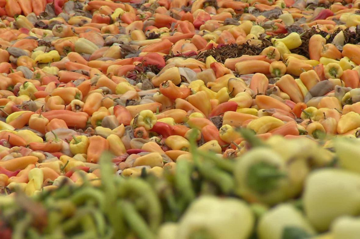 Vyhozené papriky