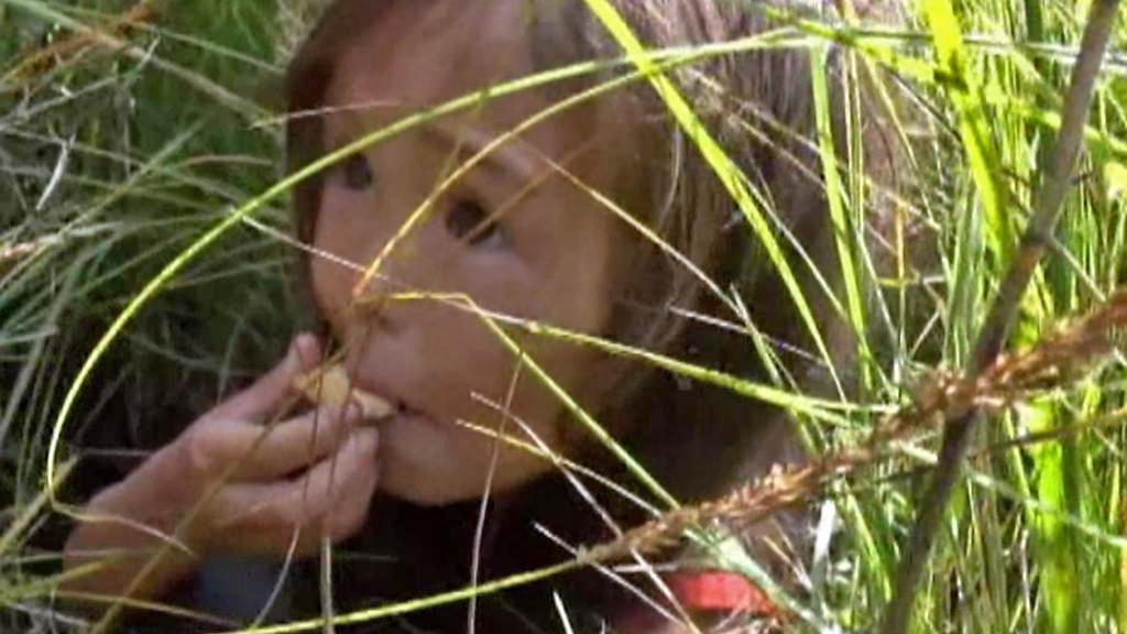 Tříletou Karinu našli záchranáři ve vysoké trávě