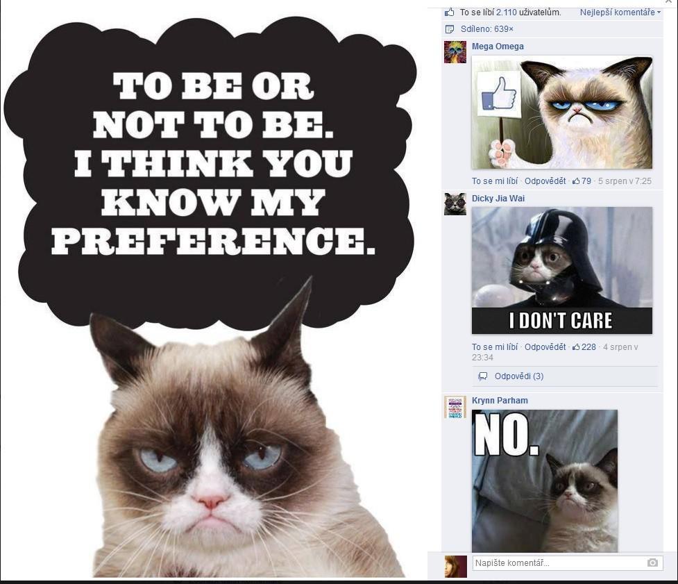 Grumpy Cat má i vlastní facebookové stránky
