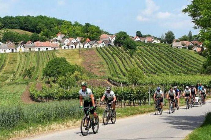 Cyklisté na jižní Moravě